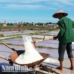 Nam Định: Còn nhiều khó khăn trước mùa muối mới