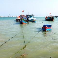 Quảng Ngãi: Siết chặt khai thác thủy sản