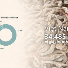 Việt Nam nhập khẩu hơn 30.000 tấn tôm từ Ecuador trong quý I năm 2019