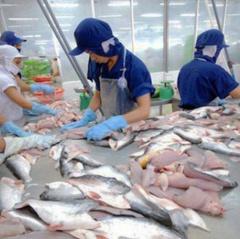 Nhật Bản nằm trong top thị trường xuất khẩu cá tra lớn nhất Việt Nam