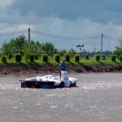 Mỹ tăng mạnh nhập khẩu cá da trơn từ Việt Nam