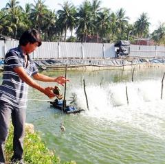 Nuôi thủy sản tổng hợp cho hiệu quả cao