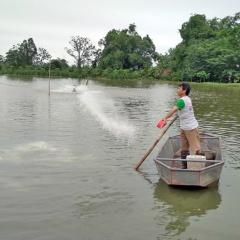 Giảm thiểu thiệt hại trong nuôi trồng thủy sản trước mùa mưa bão