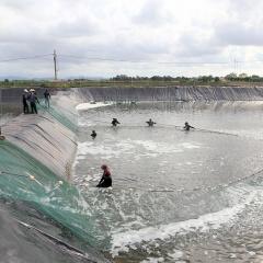 Nuôi trồng thủy sản bền vững ở Tiên Yên
