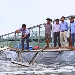 Hoằng Hóa ứng dụng KHCN trong nuôi trồng thủy sản