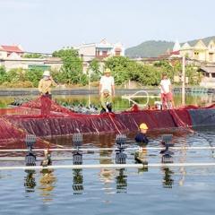 Thanh Hóa: Hướng tới nuôi trồng thủy sản bền vững