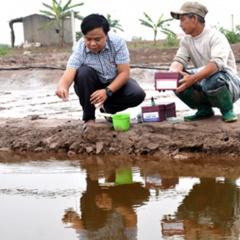 Chủ động quản lý môi trường và phòng bệnh cho tôm mùa nắng nóng