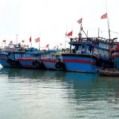 Nâng cao hiệu quả quản lý tàu cá