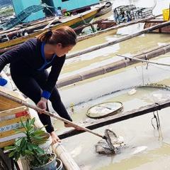 La Ngà: Sắp xếp lại vùng nuôi cá sau sự cố cá chết trắng