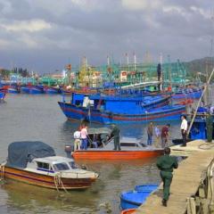 Bảo vệ nguồn lợi thủy sản là bảo vệ ngư dân