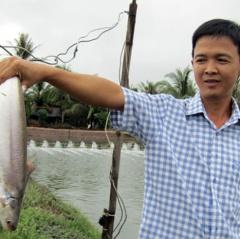 Nông dân làm giàu: Đổi đời nhờ nuôi loài cá bông lau