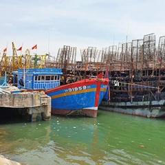 Bất cập truy xuất nguồn gốc hải sản