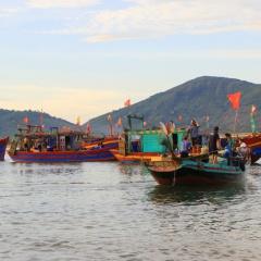 Hà Tĩnh: Vươn khơi trên tàu lớn, hải sản về đầy khoang