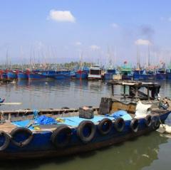 Khai thác thủy sản trái phép bị phạt tới 2 tỷ đồng