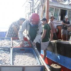 Gio Linh: Chú trọng phát triển kinh tế biển