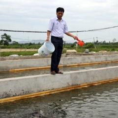 Phát triển nuôi trồng thủy sản: Nhất con giống, nhì khoa học kỹ thuật