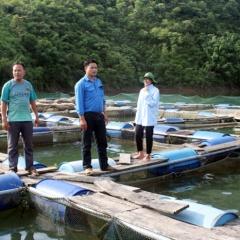 Làm giàu từ nuôi cá lồng trên lòng hồ thủy điện sông Chừng