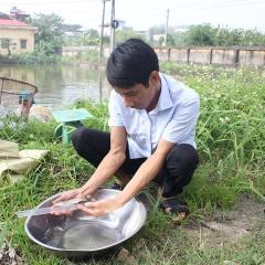 Chăm sóc và quản lý các loài cá nuôi nước ngọt