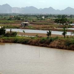Nga Sơn - Thanh Hóa: Phát triển nuôi trồng thủy sản