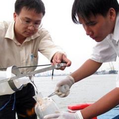 TP HCM: Thông tin kết quả quan trắc môi trường nuôi thủy sản
