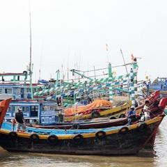 Khi mùa đánh bắt hải sản chỉ còn 4 tháng