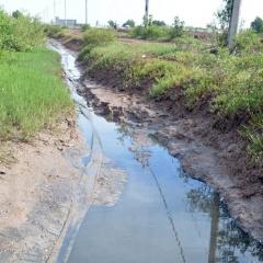 Báo động thực trạng xả nước thải nuôi tôm không xử lý ra môi trường