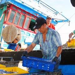 Ngư dân lo lắng vì phí tổn tăng, giá thủy sản giảm