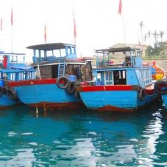 Quảng Ngãi: Công bố hạn ngạch giấy phép khai thác thủy sản