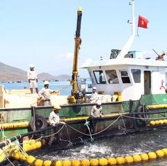 Tiềm năng phát triển nuôi biển Khánh Hòa