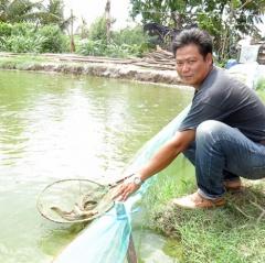 Nắm chắc đầu ra, nông dân Viên Bình rủ nhau nuôi cá chạch quế