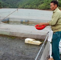 Triển vọng nuôi cá lồng trên đập Tà Keo