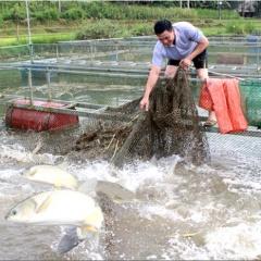 """Lạng Sơn: Nâng """"chất"""" các hợp tác xã thủy sản"""