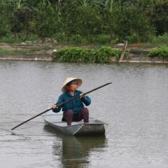 Biện pháp phòng chống nắng nóng bảo vệ vật nuôi thủy sản