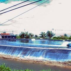 TP Móng Cái: Tín hiệu vui từ nuôi trồng thủy sản