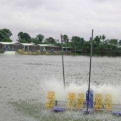Hà Nội: Tiêu chí nuôi trồng thủy sản ứng dụng công nghệ cao