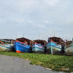Kiên Giang: Được giao hơn 4.000 giấy phép khai thác thủy sản vùng khơi