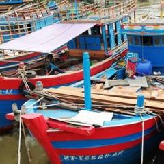"""Nhiều tàu cá Diễn Châu """"nằm bờ"""" vì thua lỗ"""