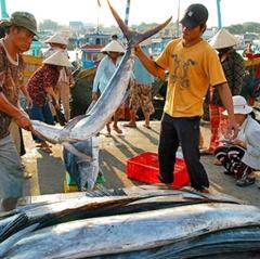 Truy xuất nguồn gốc thủy sản là bắt buộc đối với ngư dân
