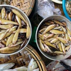 Lũ về muộn, giá cá đồng cua đồng tăng cao