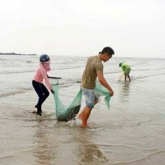 Mùa ốc cườm, ngư dân Nghệ An thu tiền triệu mỗi ngày