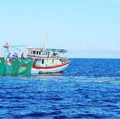 Tăng cường kiểm soát hoạt động khai thác thủy sản ven bờ