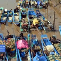 Để ngành đánh bắt thủy sản Bạc Liêu bền vững