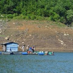 Quảng Nam: Còn nhiều tiềm năng cho nuôi cá lồng ở hồ thủy điện