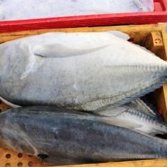 Hà Tĩnh: Không phát hiện dư lượng độc hại trong sản phẩm thủy sản