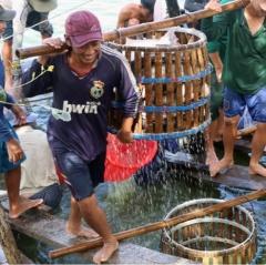 Gỡ khó cho ngành thủy sản