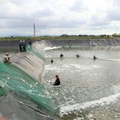 Quảng Ninh: Để thủy sản trở thành ngành kinh tế mũi nhọn