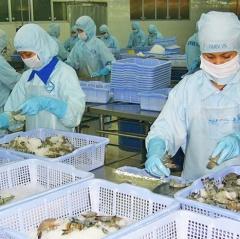 Nội dung, trình tự, thủ tục xuất khẩu thủy sản sang Trung Quốc