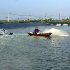 Phòng chống, khắc phục hậu quả do bão lũ đối với thủy sản nuôi