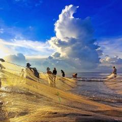 Nếu một ngày biển không còn cá tôm