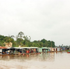 Đồng Nai: Xây dựng làng cá bè sinh thái